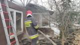 Pożar altany na terenie ogródków działkowych w Piotrkowie [ZDJĘCIA]