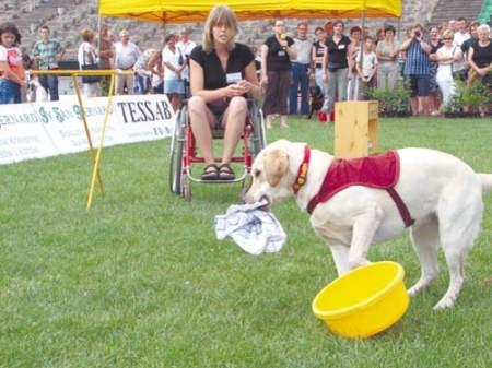 Karolina Kubiś pokazała, że dobrze wyszkolony pies serwisowy potrafi pomóc rozwiesić pranie.