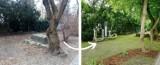 Niezwykła metamorfoza podwórka na Bielanach w Warszawie. Zaniedbana przestrzeń zamieniła się w oazę zieleni