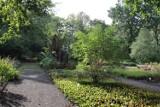 Ogród botaniczny w Zabrzu zostanie rozbudowany! Miasto pozyskało fundusze na jego modernizację
