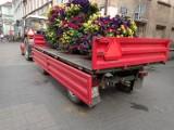 LESZNO. Więcej kwiatów na starówce. Wiecie, gdzie się pojawiły? [ZDJĘCIA]