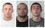 Te osoby są poszukiwane za kradzieże z włamaniem w Kujawsko-Pomorskiem [zdjęcia]