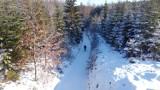 Góra Chełmska w Koszalinie w zimowej szacie. Jest pięknie! [ZDJĘCIA]