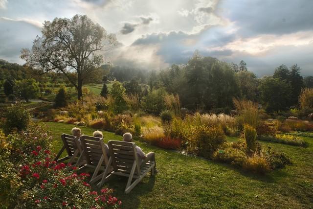 Ogród Milenijny w Wojsławicach – edukacja i wypoczynek w jednym miejscu