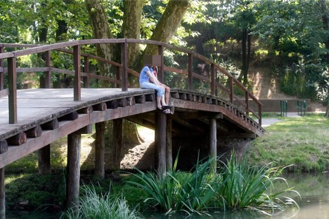 Mostek zachowanych w parku