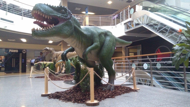 d47f6a94b9 Galeria Tęcza w Kaliszu zaprasza do oglądania wystawy dinozaurów ...