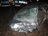 Tragiczny wypadek na drodze Gniezno - Września. Pieszy nie żyje