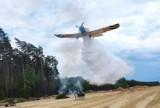 116 strażaków w lesie w Starym Oleśnie. W akcji samolot i helikopter [WIDEO, ZDJĘCIA]