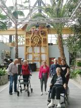 Opiekun osoby niepełnosprawnej ma możliwość uzyskania pomocy