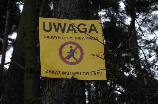 Od dzisiaj (środy 6 lutego) do końca czerwca saperzy będą czyścić lasy między Koziegłowami a Kicinem z niewybuchów i niewypałów