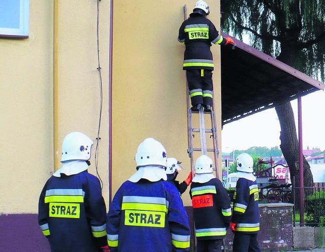 Strażacy walczą nie tylko z pożarami, ale i z osami