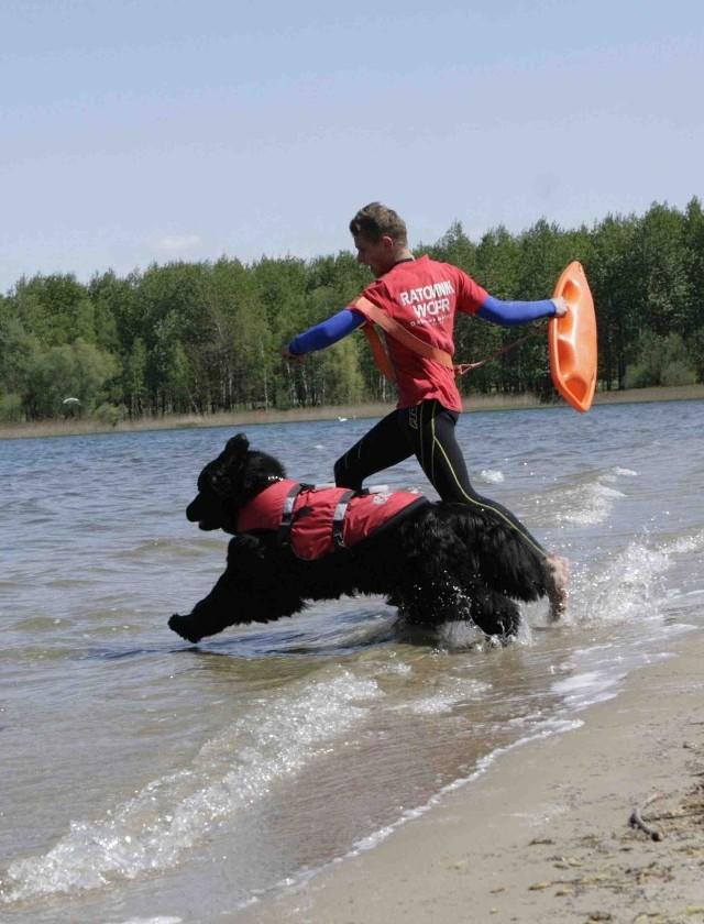 W Pogorii mają prawo kąpać się tylko psy ratownicze