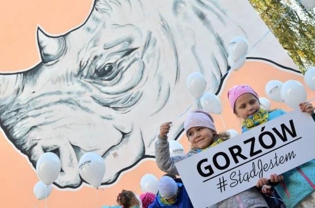 Szkielet gorzowskiego nosorożca ma około 125 tys. lat.