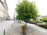 Plac Magistracki w Wałbrzychu na aktualnych zdjęciach! Tak wyglądają kamienice, sklepy, instytucje