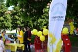 Jesienne Pola Nadziei w Kwidzynie. W najbliższą sobotę na deptak zaprasza Kwidzyńskie Towarzystwo Przyjaciół Chorych