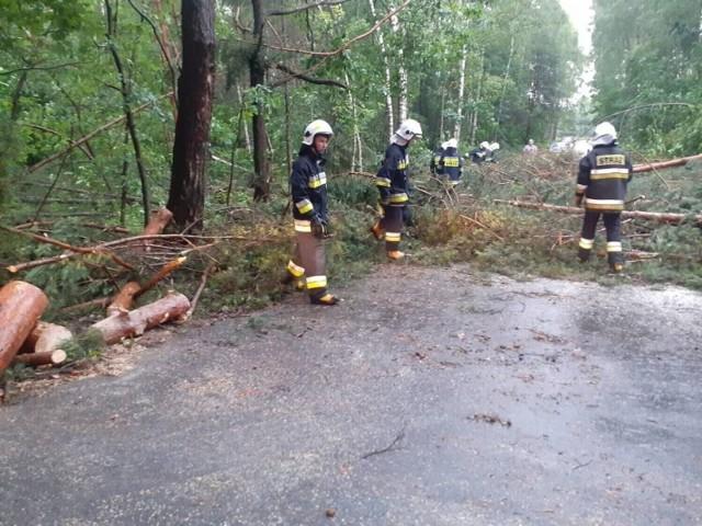 Jedna z interwencji strażaków dotyczyła pochylonego nad jezdnią drzewa.