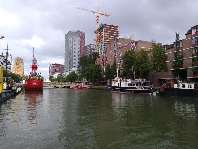 Kontrowersyjna wypowiedź burmistrza Rotterdamu o Polakach migrujących do Holandii