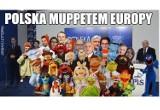 Wyniki wyborów do PE. Internet tworzy zabawne MEMY