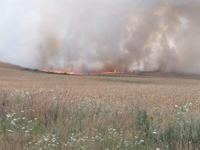 Pożar pola w Zawadzie