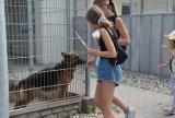 """Grudziądzki sąd uznał racje Fundacji """"Siedem życzeń"""" i nie musi ona opuszczać Centrum Opieki nad Zwierzętami"""