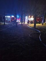 Pożar w Korczewie. Paliła się wiata dla koni