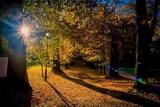 Pogoda na całą jesień i początek zimy. Ciepły październik, deszczowy listopad i szybka zima? Takie są prognozy meteorologów