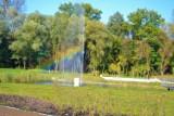 Promenada w Mysłowicach jesienią. Jest kolorowo i pięknie. Warto więc wybrać się tu na spacer