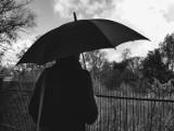 Pogoda w Koninie. Potrzebne kurtki i parasole. Zimno.  [ZDJĘCIA, WIDEO]