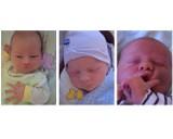 Noworodki Gniezno. Dzieci urodzone w drugim tygodniu lipca [FOTO]