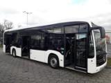 Elektryczne autobusy w Gdańsku. GAiT ubiega się o dofinansowanie zakupu zeroemisyjnych pojazdów - standardowych oraz przegubowych