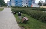 Wandale w Lublińcu niszczyli, co znalazło się na ich drodze - samochody, przystanek, ławki