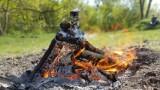 Nielegalnie ogniska w Lasku Arkońskim. Mieszkańcy mają swoje powody, ale to zagrożenie!