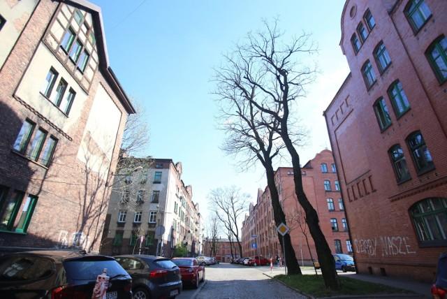 Mieszkańcy Rudy Śląskiej pozostają w domach pomimo wiosennej aury. Zobaczcie jak wyglądają ulice miasta w czasie pandemii Zobacz kolejne zdjęcia. Przesuwaj zdjęcia w prawo - naciśnij strzałkę lub przycisk NASTĘPNE