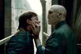 Harry Potter bije rekordy kasowe. Zarobił już 481 mln dolarów