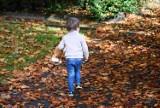 W Gorzowie jest tajemniczy ogród. Jesienią wygląda bajecznie. Nie wierzycie? Idźcie tam na spacer!