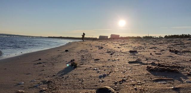 Co roku kraje nadbałtyckie obchodzą 22 marca Dzień Ochrony Morza Bałtyckiego, który został ustanowiony  ustanowiony w 1997 roku przez Komisję Helsińską. Dzień jest okazją do zwrócenia uwagi na takie zagadnienia, jak transport morski, ochrona środowiska i problemy ludzi związanych z morzem.