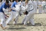 Pokaz taekwondo. Małe Morze: wystąpiła młodzież z Podlasia ZDJĘCIA, WIDEO