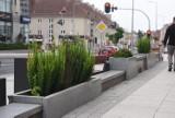 W Zielonej Górze będą ekologiczne paczkomaty i więcej zieleni! Gdzie dokładnie? Miasto dołącza do programu Green City