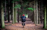 """Szlaki rowerowe Śrem i okolice. Podpowiadamy, gdzie wybrać się rowerem i zapraszamy na wycieczkę """"Polnymi Drogami"""", czyli na czarny szlak"""