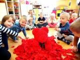 Dzień Pluszowego Misia w przedszkolach w Piotrkowie. Zobaczcie, jak świętowały maluchy
