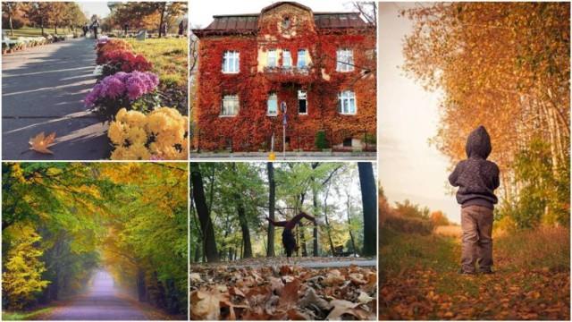 Jesień w Tarnowie i okolicach wygląda pięknie