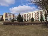 W poszukiwaniu wiosny w Świdniku. Zobacz zdjęcia ze spaceru po os. Wschód i nie tylko!
