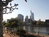 Spacer po mieście Frankfurt nad Menem [ZDJĘCIA]