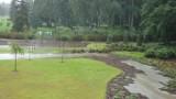 Zalane alejki, podmyty żwir. Ogród Japoński w Parku Śląskim po ulewach. Internauci kpią, rzeczniczka uspokaja