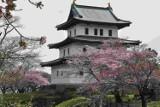 XVI Dni Kultury Japońskiej w Toruniu [program]