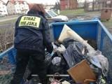 Podrzucał śmieci, bo... nie miał swojego pojemnika [zdjęcia]