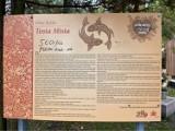 Ktoś pomazał tablicę z legendą Złotej Rybki z WOŚP w Sosnowcu. MZUK: Prędzej czy później wpadniesz w nasze ręce