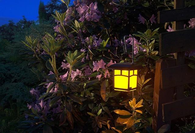 Warto zadbać, żeby ogród w pobliżu kącika wypoczynkowego był atrakcyjny nie tylko w ciągu dnia, ale też wieczorem. Zobacz na kolejnych slajdach rośliny, które warto mieć w kąciku wypoczynkowym w ogrodzie. Przesuwaj zdjęcia w prawo, naciśnij strzałkę lub przycisk NASTĘPNE.