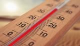 40,2 stopnie pod Opolem. Ten rekord temperatury w Polsce od stu lat nie został pobity
