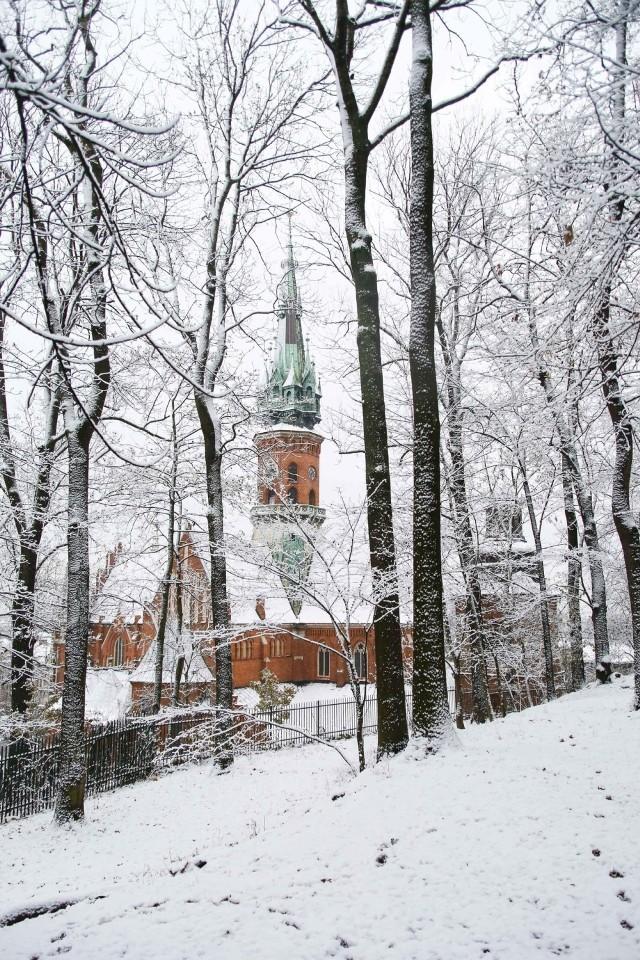 Zima w krakowskim Parku Bednarskiego. Pierwsze opady śniegu przyszły jeszcze w listopadzie